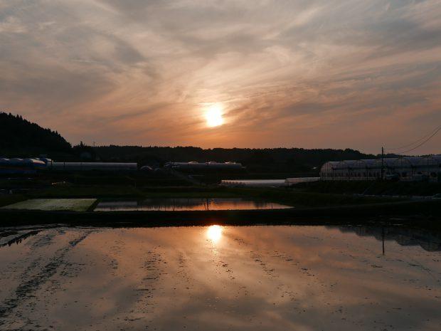 evening-scenery