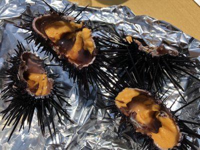 shimoda-onsen-gastronomy